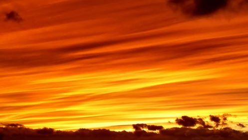 reo-sunset